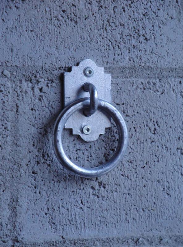 anello in ferro zincato per briglie cavalli