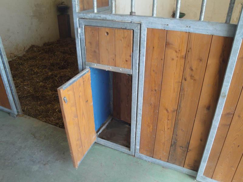 particolare sportello box per cavalli per briglie frustino accessori